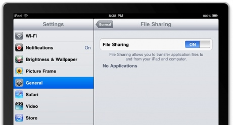 iPad file sharing disk mounting
