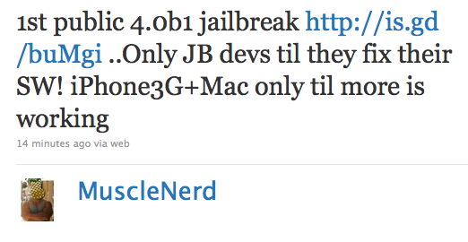 iPhone OS 4.0 beta Jailbreak by Dev Team Released [Recommended Only for Cydia Devs]